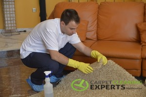 Professional carpet and rug cleaning