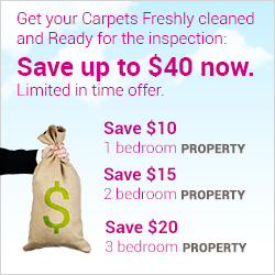 Get your Carpets Freshly cleaned and ready for inspection